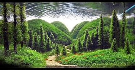 你可能會不相信,但是你的眼睛正在欺騙你。看近一點...這真不是一座森林。