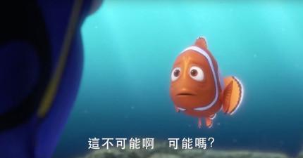 大家苦苦等待13年的動畫電影《海底總動員2》終於釋出超爆笑的預告片了!多莉似乎想起了什麼?
