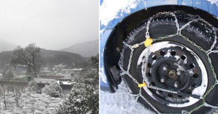 雪寶準備「過境陽明山」!周末0度白雪世界覆蓋仰德大道「台灣人沒裝雪鍊不能上山!」