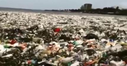 30噸垃圾海上漂成「新大陸」 專家:2050年垃圾比魚多
