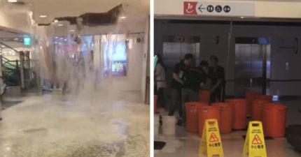 雨神也要搶折扣!百貨天花板撐不住 瞬間破大洞洪水湧入:根本是瀑布吧...