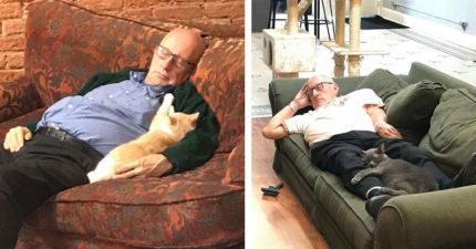 最可愛志工!阿伯每天去庇護所「跟貓咪一起睡」 網融化:這是最棒的幫助♥