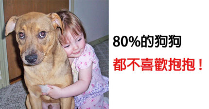 10件「狗狗其實超討厭」而我們一直做的事情 買「新衣服」給愛犬會害慘牠們!
