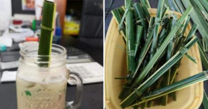 菲律賓推出「椰樹葉子製成的環保吸管」 製作過程「不到2分鐘可以救地球」網友讚爆!