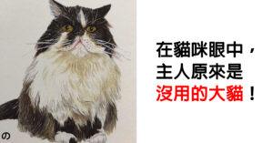 貓咪被爆從來「不把飼主當人看」 網揭開「超心酸事實」奴才秒爆淚:我有夠沒用!