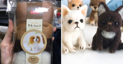 網友買「萌犬羊毛氈」材料包卻堅持不照說明書做 最後「超驚悚成品」嚇壞網友:狗看到會哭!