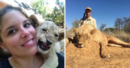 熱心妹飛南非當志工照顧小獅子 卻意外發現自己竟變成「有錢人的罪惡幫凶」!