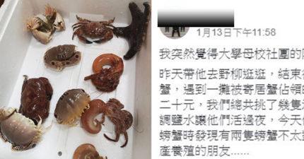 花「20元買螃蟹」其中2隻長得怪怪的 內行人看照片警告:吃了會沒命!