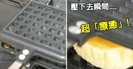 影/用熱壓機「碾爆7種食物」 飯糰爆開...害人超想買一台!