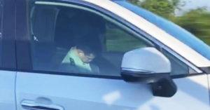 軍官被抓包國道上「放開手一路睡」專家:那台車沒自駕功能