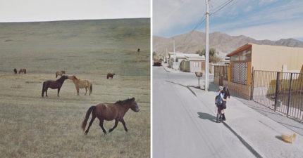 疫情無法出國?神人用「谷歌功能」拍出「唯美風景照」連結全世界