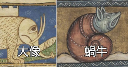 很想知道他們在嗑什麼的「中世紀動物畫」 你說那是鱷魚?!