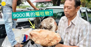 漁夫撿到一塊「嘔吐物」 打火機一燒「香氣濃郁」:價值9000萬!